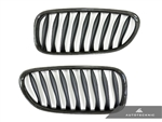 Replacement Carbon Fiber Front Grilles - E85 Coupe / E86 Cabrio / Z4 Series & Z4M
